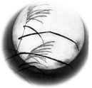 moon-edited